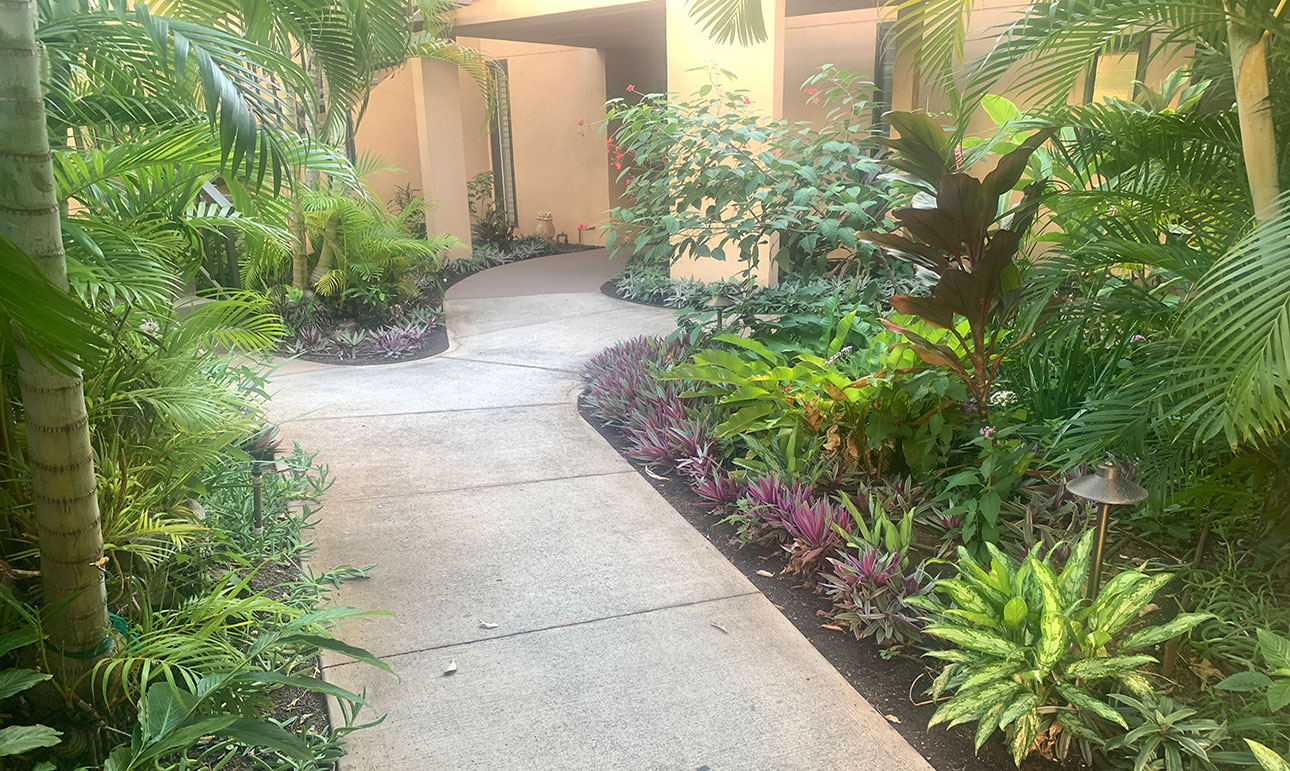 approach to EKahi 20A in courtyard